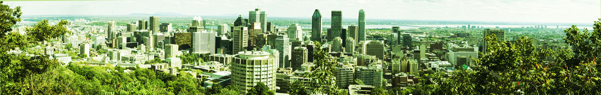 Montreal Cityscape
