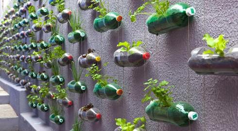Rosenbaum_Plastic-Bottle-Garden